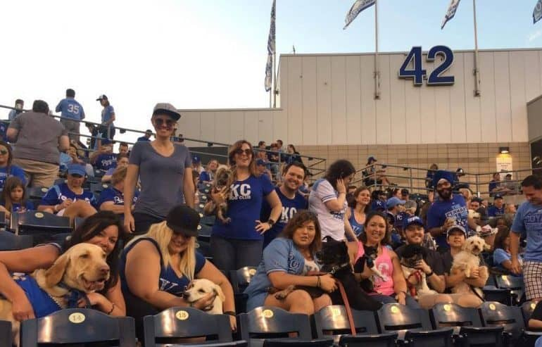 Bark at the Park with the Kansas City Royals