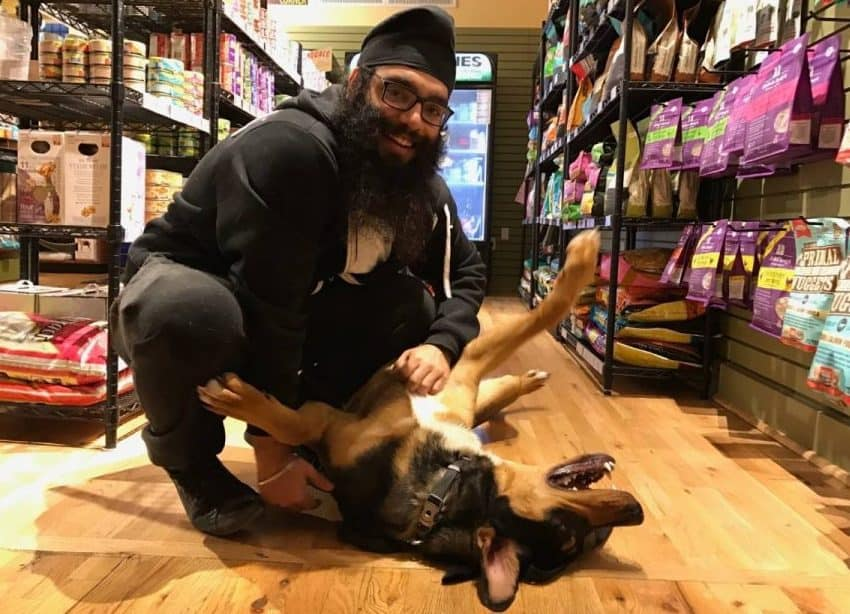 KC Dog Club: Dog-Friendly Places to Take your Dog Shopping in Kansas City